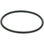 Saeco o-ring (van filter) 996530013571