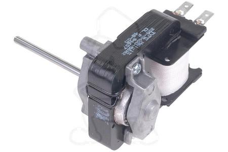 Motor (Van ventilator) 481936118361